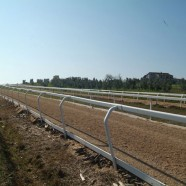Horses in training list updated